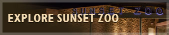 Explore Sunset Zoo